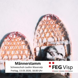 FEG-Visp Schneeschuhwanderung